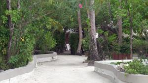 Nika Island Resort & Spa, Maldives, Курортные отели  Остров Ника - big - 136