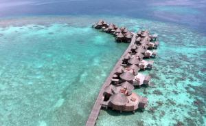 Nika Island Resort & Spa, Maldives, Rezorty  Mativeri - big - 116