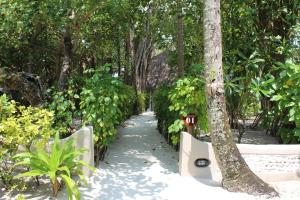 Nika Island Resort & Spa, Maldives, Rezorty  Mativeri - big - 17