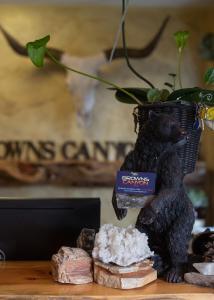 Browns Canyon Inn, Hotel  Salida - big - 18