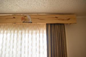 Browns Canyon Inn, Hotel  Salida - big - 51
