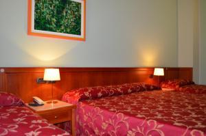 Hotel Olioso, Отели  Пескьера-дель-Гарда - big - 57