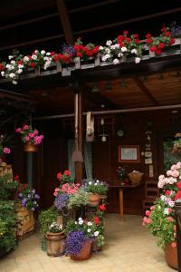 Residence Casa dei Fiori - Apartment - Alagna Valsesia