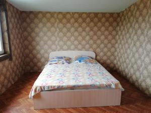Guest House Dudeevykh - Malyy Khuzhir