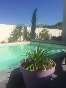 obrázek - Villa Des Romieux