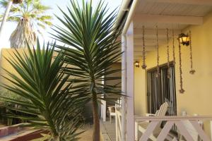 Beach Walk House and Cottage - Self Catering