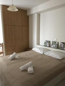 CHC Amazones Apartment - Hotel - Ippoliti