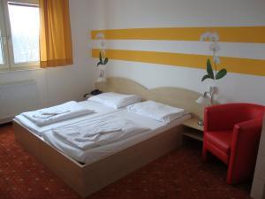 Lenas Donau Hotel, Hotely  Vídeň - big - 23