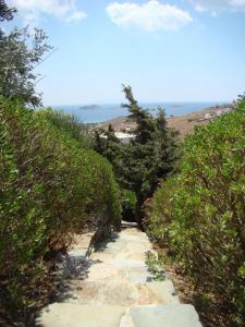 Tou Mikrou Voria Andros Greece