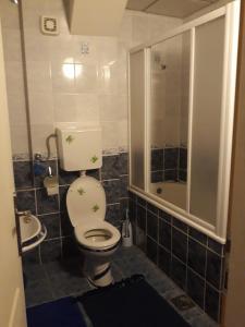Apartments Tofilovic, Appartamenti  Zlatibor - big - 8