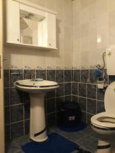 Apartments Tofilovic, Appartamenti  Zlatibor - big - 7