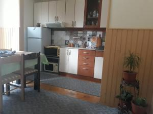 Apartments Tofilovic, Appartamenti  Zlatibor - big - 2
