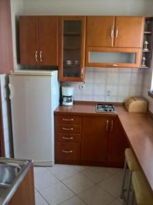 Apartment Igor Pjescana - Pješčana Uvala
