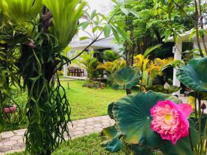 Sahaa Beach Resort (40 of 56)