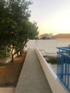 Villa Bagia Andros Greece