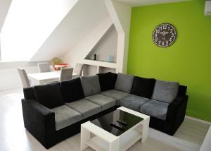 Apartment Vatra