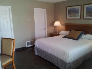 Oasis Boutique Motel, Motel  Boulder City - big - 21
