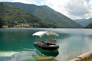 Privatni smještaj Tijanić, Pensionen  Plužine - big - 56