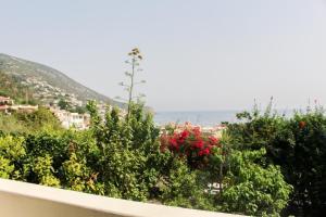Lantana Apartment - AbcAlberghi.com