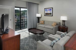 DoubleTree by Hilton Biltmore/Asheville, Hotels  Asheville - big - 35