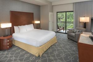 DoubleTree by Hilton Biltmore/Asheville, Hotels  Asheville - big - 54