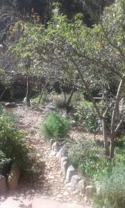 Los Carrizos, Penzióny  Ollantaytambo - big - 8