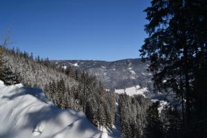 Gasthof Oberer Gesslbauer, Hotels  Stanz Im Murztal - big - 37