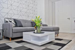 Apartament BLACK&WHITE - Oławska 19