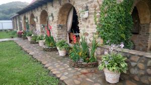 Guest House na Lenina 73, Case di campagna  Solënoye - big - 11