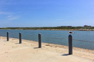 Casa Diga at Beach Haven, Dovolenkové domy  Corpus Christi - big - 80
