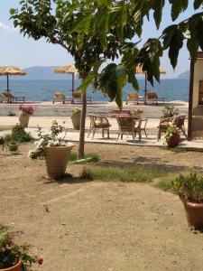 Ktima Develekou Argolida Greece