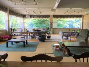 Auberges de jeunesse - Ogano Guesthouse