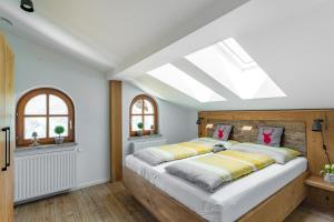 Alpenhaus Dachstein.Zauber - Apartment - Abtenau