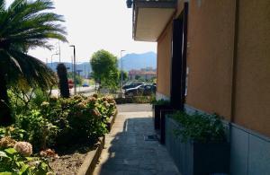 obrázek - Casa Bonelli