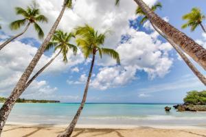 obrázek - Playa Bonita Beachfront 4E1