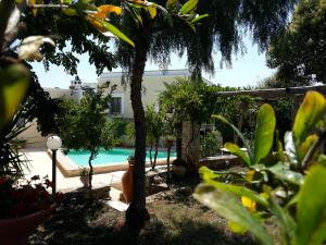 Casal del Borgo, an old farmhouse surrounded by greenery and a few steps from the village., Ferienhäuser  Ostuni - big - 4