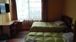 Hostal Tótem, Hostels  Valdivia - big - 4