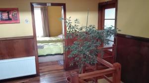 Hostal Tótem, Hostels  Valdivia - big - 2