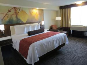 Best Western Premier Milwaukee-Brookfield Hotel & Suites, Hotels  Brookfield - big - 57