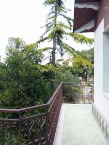 Villa Rosati - AbcAlberghi.com