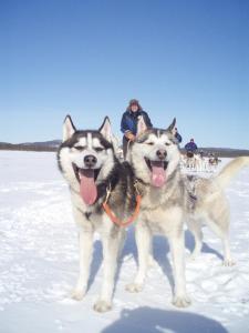 Kakslauttanen Arctic Resort (35 of 123)