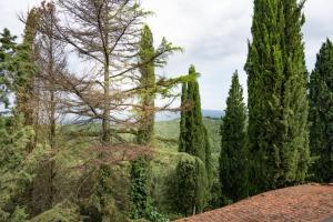Agriturismo Fattoria Di Gratena, Фермерские дома  Pieve a Maiano - big - 111