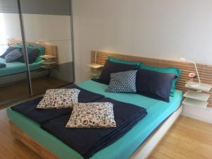 Apartment Saax - Rijavci