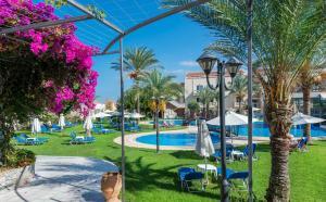 Selini Suites, Hotely  Kolimvárion - big - 6