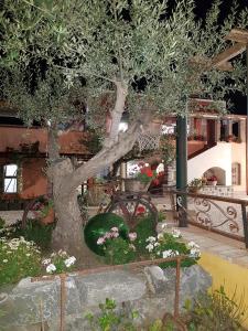 Original sicily house