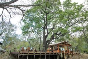 Ndzhaka Tented Camp, Люкс-шатры  Manyeleti Game Reserve - big - 24