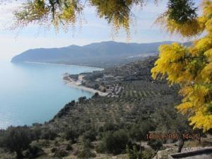 obrázek - Villa Panorama