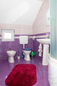 Rustic Argesean, Guest houses  Corbeni - big - 39
