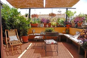 Garden Flower - abcRoma.com