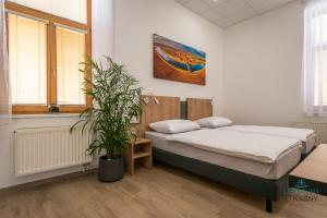Ubytovna U Kašny, Hostely  Uherské Hradiště - big - 11